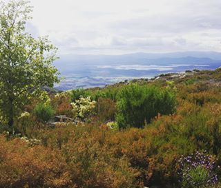 valleambroz - La primavera asoma también en las sierras de #valleambroz, con vistas hacia las llanuras de #Caparra 🇬🇧 Spring shows also at heights of #AmbrozValley, balcony over Caparra plains  #paraisomagico #nortedeextremadura #loves_extremadura #estaes_extremadura #caceresturismo #Extremadura #secreteurope #europetrip #5starnature #ig_spain  #ok_spain #monumentalspain #super_spain #spainiswonderful #visitspain #spain_vacations #loves_spain #turismospain #earthlusters #instantes_fotograficos #loves_world #loves_bestpic  #travelawesome #curatethis1x #clupofthephoto #earthexperience #igers_extremadura - 2018/06/13 10:43 - 1800693301009286216_1208394820